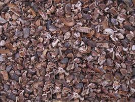 Cómo utilizar granos descortezados de cacao