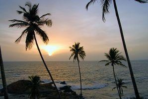 Vacaciones exóticas para las parejas en la India