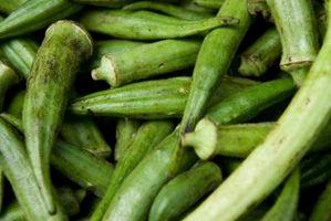Cómo a Pickle okra sin sal