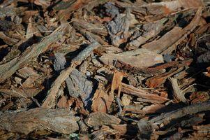 Cómo usar los pedazos de madera Como arena para gatos