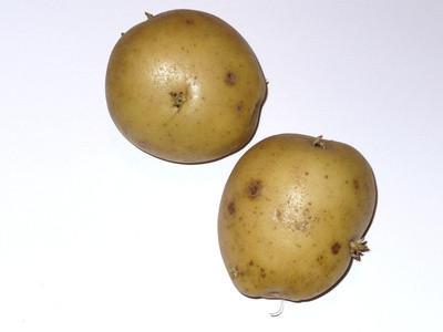 Cómo cocinar las patatas envueltas-Foil en una parrilla de gas