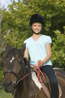 Tradicional doma de caballos