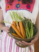 ¿Qué tipo de verduras crudas ¿Se puede alimentar a un perro?