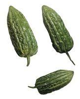 Cómo usar el melón amargo