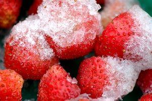 Como en envoltorios de plástico alimentos se congelen