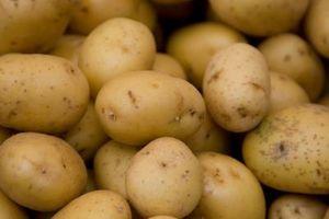 Cómo mantener las patatas hervidas se pongan marrones