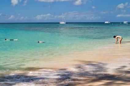 ¿Por qué son importantes los arrecifes de coral a Barbados?