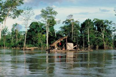 Amazon Rain Forest Tours en Perú