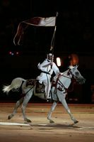 Cómo leer un pedigrí de un caballo árabe
