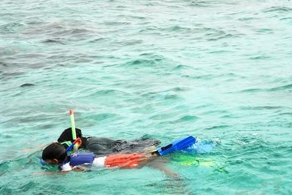 Maui Snorkel Tiendas