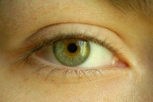 Cómo utilizar pegamento de ojos