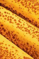 Cómo reemplazar aceite vegetal para hornear pan de plátano