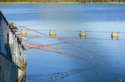 Barcos de pesca de atún del partido en Nueva Jersey