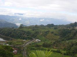 Festivales y Música en Costa Rica