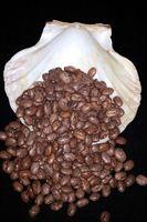 Cómo Microonda Pinto Beans