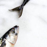 Cómo Fishtail trenza Medio Pelo