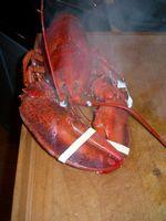 Restaurantes de mariscos cerca de Deer Isle, Maine