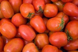 DIY tomate Press