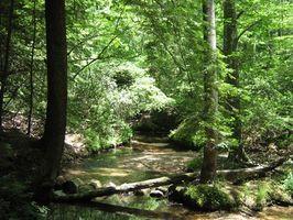 RV acampar en el Parque Estatal de Alabama