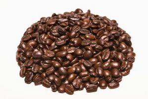 Cómo usar una licuadora para moler café