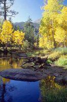 Lago Campamentos Con Piscina en el sur de California