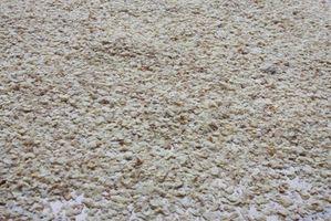 Diferencia entre la llanura de germen de trigo y germen de trigo crudo