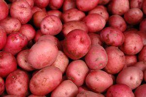Cómo cocinar las patatas rojas a ebullición