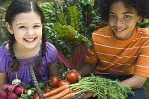 Cómo agregar verduras para sopa