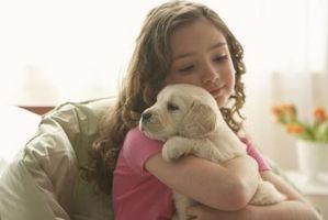 Cómo ayudar a su hijo a superar miedo a los perros
