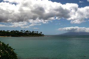 Todos los paquetes todo incluido Hawai