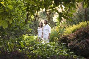 Tipos de ropa que la gente lleva al Bosque Tropical