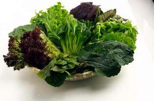 Cómo cocinar verdes de mostaza estilo cajún