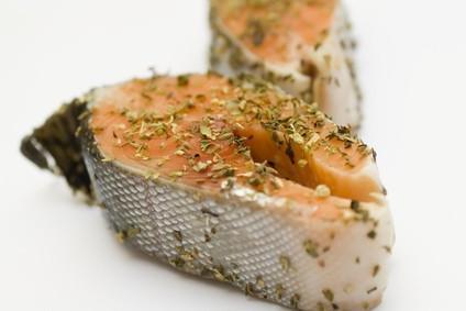Kits de peces fumadores de Uso Doméstico