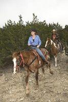 Cómo criar a los auriculares en un caballo occidental del placer