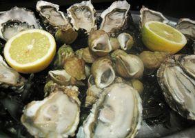 Herramientas para abrir las ostras