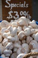 Cómo Sautee frescas sectores de hongos