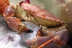 Restaurantes de mariscos en Lynnhaven, VA