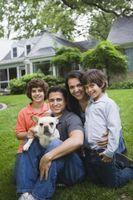 Cómo aclimatar un perro del rescate a su casa ya su familia