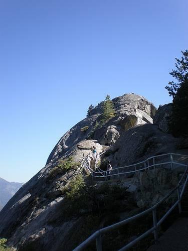 La información sobre el Parque Nacional Sequoia
