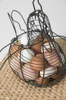 Cómo obtener gallinas a poner huevos que pone en las cajas