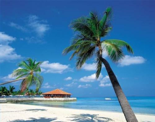 Cosas que debes llevar en un crucero por el Caribe