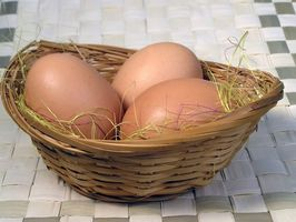 Cómo criar huevos de pato orgánicos
