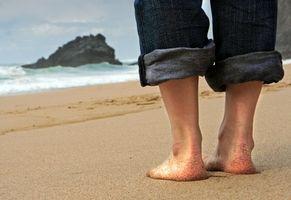 El Mejor solteros de vacaciones